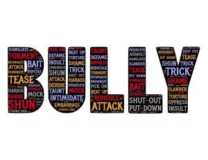 bully-655659_640